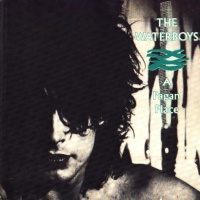 The Waterboys - Cathy