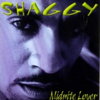 Shaggy - Tender love