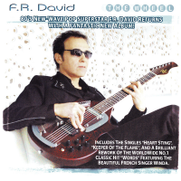 F. R. David - Some People Never Learn
