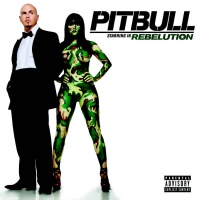 Pitbull - Shut It Down