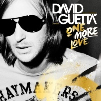 David Guetta - Who's That Chick