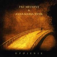Pat Metheny - Polskie Drogi