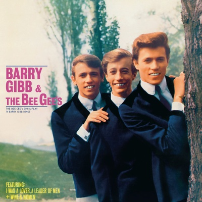 Bee Gees - The Bee Gee's Sing and Play 14 Barry Gibb Songs