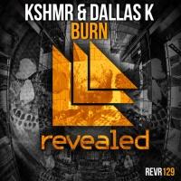 R3hab - Burn