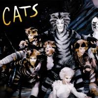 Кошки - Гамби Кошка