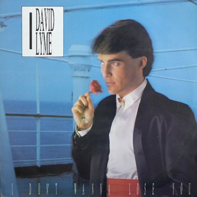 David Lyme - I Don't Wanna Lose You (Vinyl, 12'') (Single)