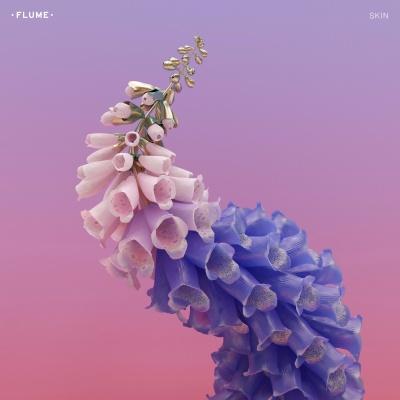 Flume - Skin (Album)