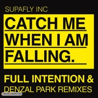 - Catch Me When I'm Falling (Remixes) WEB