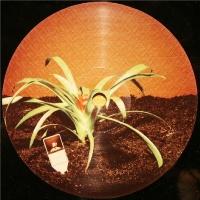 Sur La Terre (DJ Tools Limited Edition)
