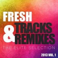 - Fresh Tracks & Remixes: The Elite Selection 2013 vol. 1