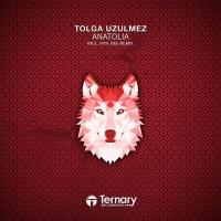 Tolga Uzulmez - Anatolia (Album)