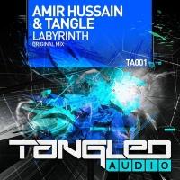 Amir Hussain - Labyrinth (Single)