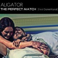 The Perfect Match (Single)