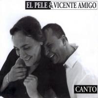 Vicente Amigo - Canto