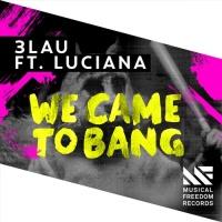 We Came To Bang (Original Mix)