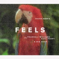 Calvin Harris - Feels