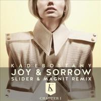 - Joy & Sorrow