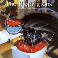 The Rippingtons - Black Diamond