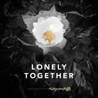 Avicii - Lonely Together