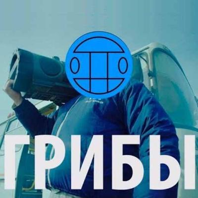 Грибы - Тает лёд (Kolya Funk & Lavrushkin Remix)