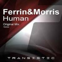 Ferrin - Human