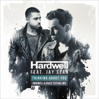 Hardwell - Thinking About You (Hardwell & Kaaze Festival Mix)
