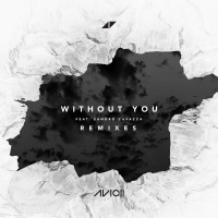 - Without You (Remixes)