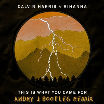 Calvin Harris - This Is What You Came For (Andry J Bootleg)