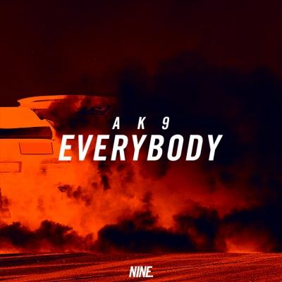 ak9 - Everybody