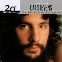 Cat Stevens - Wild World
