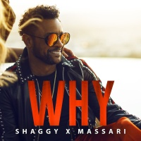 Shaggy - Why