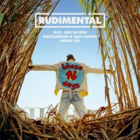 Rudimental - These Days (Remix EP)
