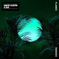 David Guetta - Flames (Robin Schulz Remix)