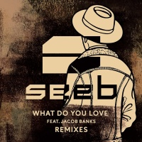 Seeb - What Do You Love (Zac Samuel Remix)