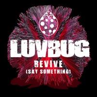 LuvBug - Revive (Say Something)