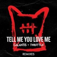 Tell Me You Love Me (Pat Lok Remix)