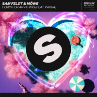 Sam Feldt - Down For Anything (Club Mix)