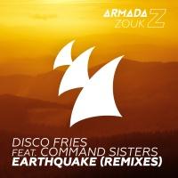 Disco Fries - Earthquake (Arizon Remix)