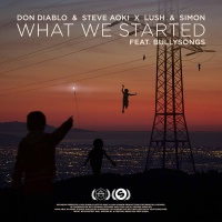 Don Diablo - What We Started