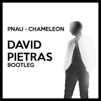 PNAU - Chameleon (David Pietras Bootleg)