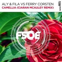 Camellia (Ciaran McAuley Remix)