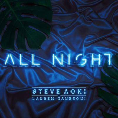 Steve Aoki - All Night