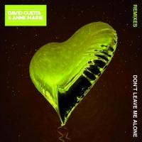 David Guetta - Don't Leave Me Alone (David Guetta Remix)