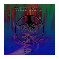 Why Pavo - Keys (Original Mix)