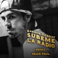 Subeme La Radio (Remix)