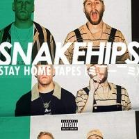 Snakehips - Deja Vu