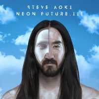 Steve Aoki - Anything More