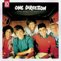 One Direction - You Don't Know You're Beautiful - Single