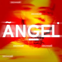 Звонкий - Angel