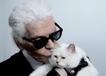 Кошка Карла Лагерфельда «выпустила» именную ароматическую свечу